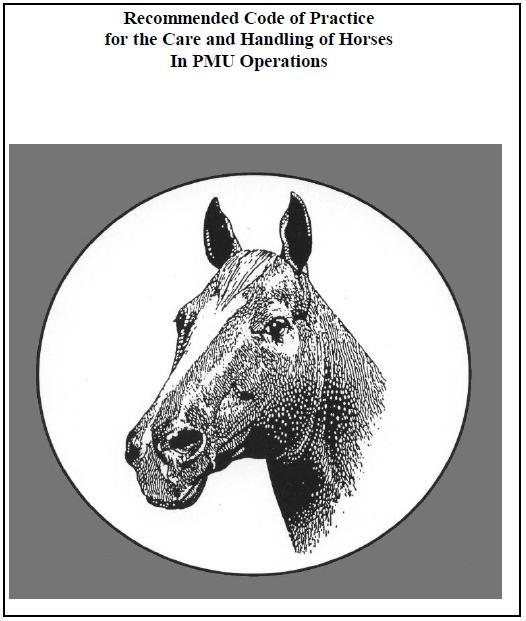 Horse urine